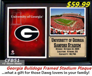 UGA Framed Stadium Plaque!!!