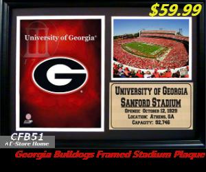 UGA Framed Stadium Plaque!!!